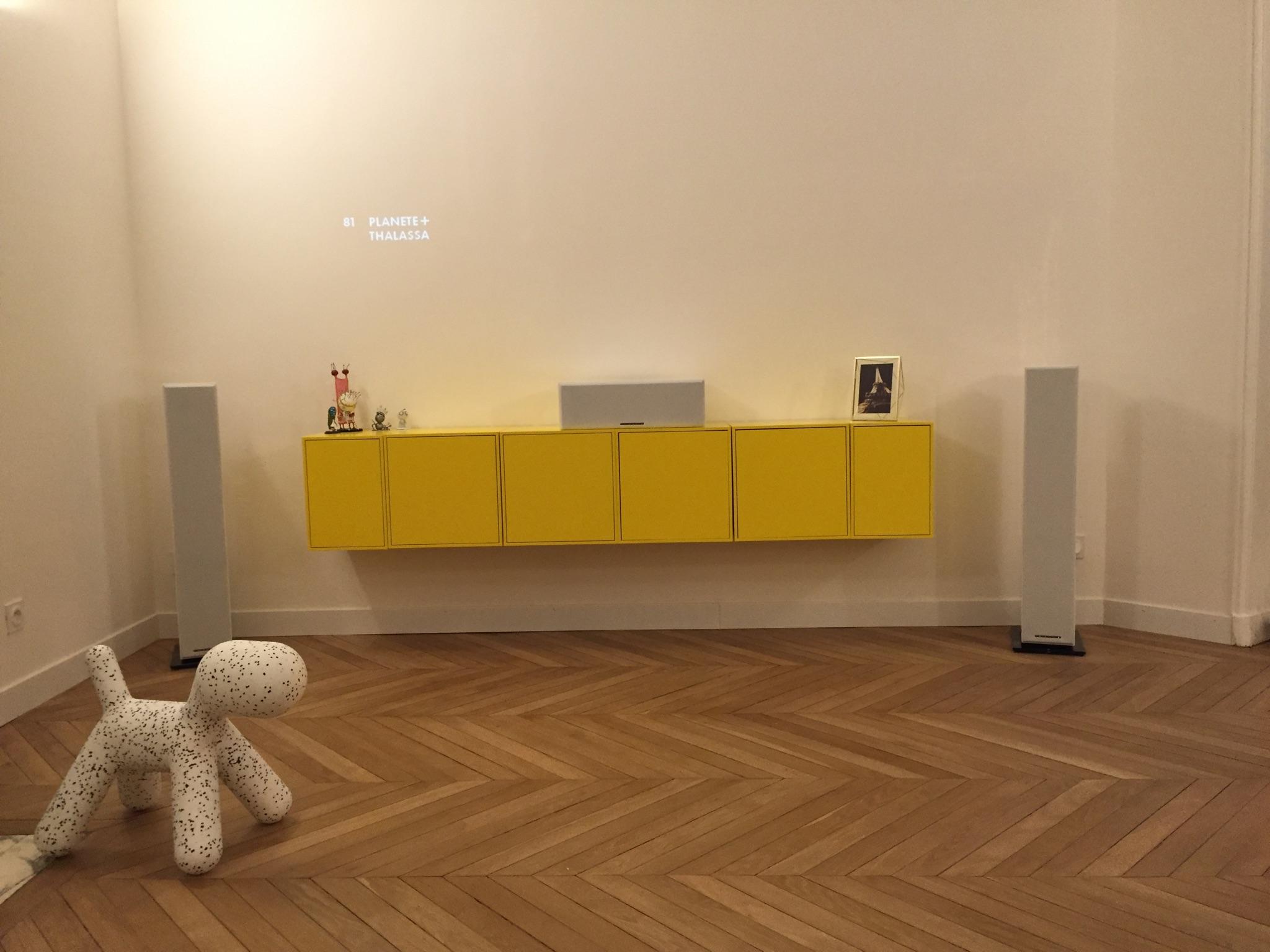 Coralie Aubert Appartement Haussmannien 140m Une Ambiance  # Meubles Tv Jaune